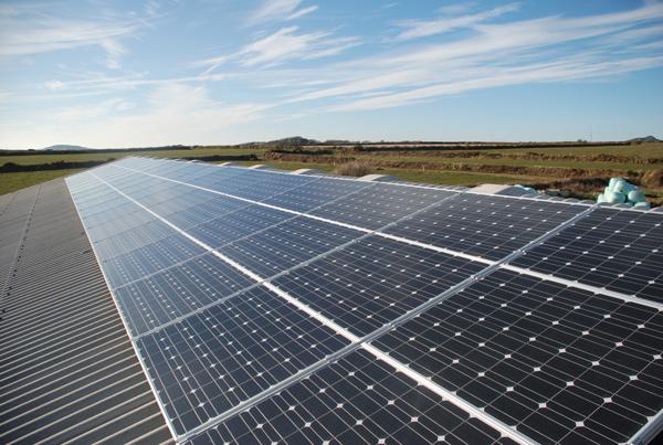 Caerfai Farm now using 100% renewable energy